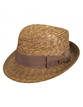 Kangol Wheat Braid Arnold Trilby Brown